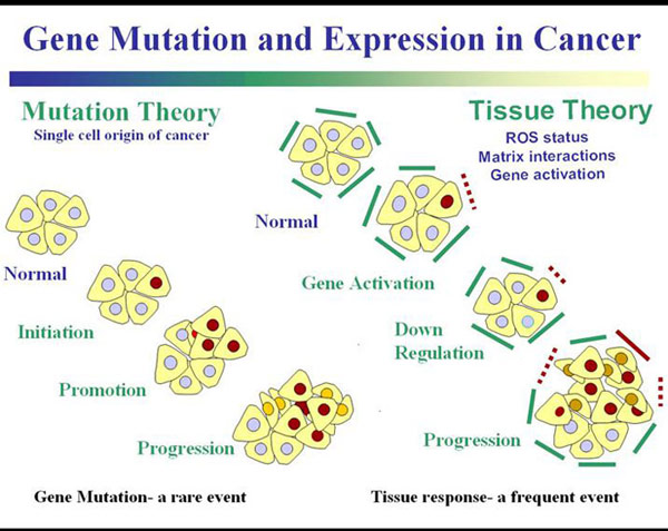 gene-mutation-cancer