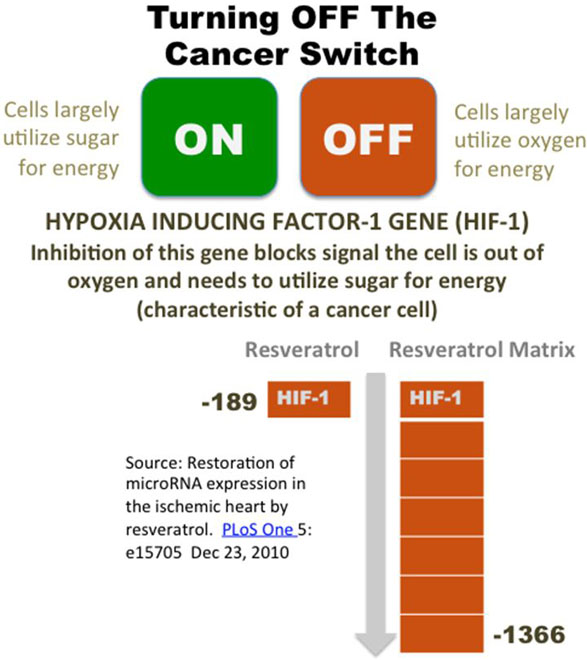 turn-off-cancer-switch