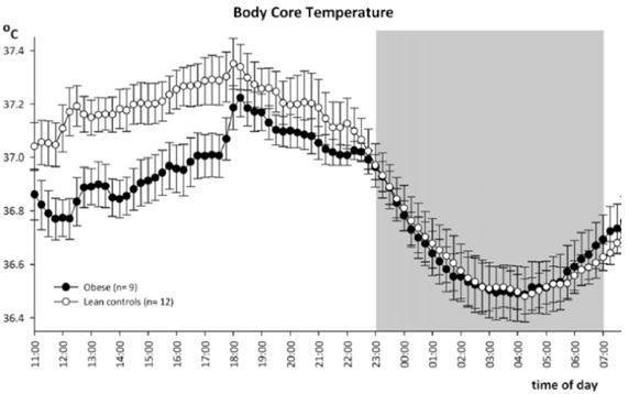 Body temperature chart