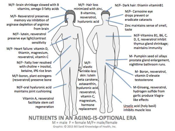 anti-aging-nutrients