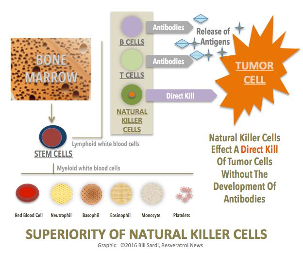 Chart: Superiority of Natural Killer Cells