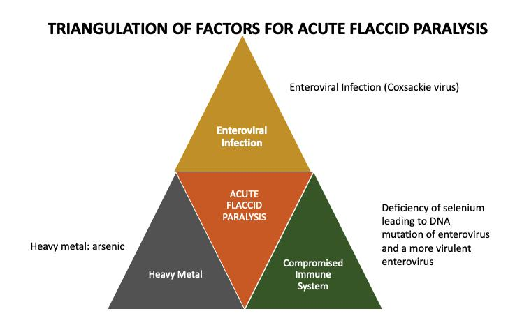 triangulation of factors for acute flaccid paralysis