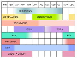chart: seasonal variation